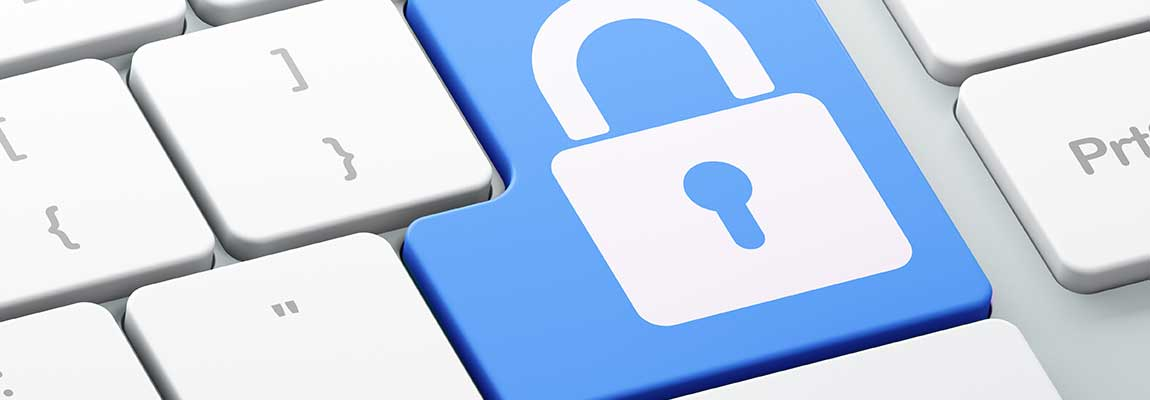 Privacy Policy / GDPR